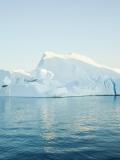 Korbi Grönland 2.jpg