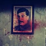 7_Still_Stalin_50x50.jpg