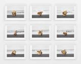 Giuseppe Lo Schiavo Wind Sculptures.jpg