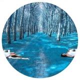 I cicli: Azzurro (2013)