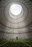 D secret garden shed (BE) 60x90 (2013).jpg