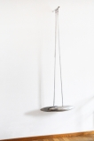 RK pendulum essential.jpg