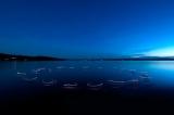Ich bin Dein See (2009)