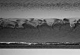 Max-Ernst-is-absent.jpg